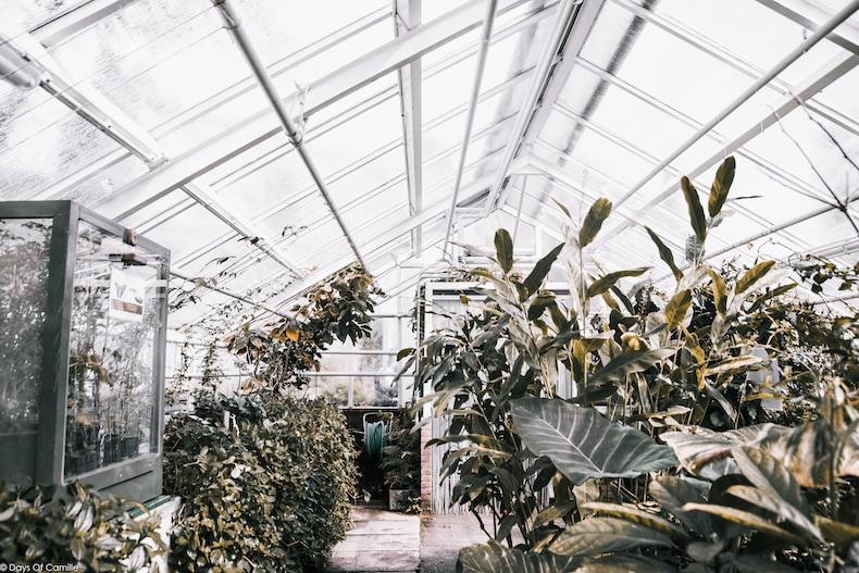 Lundis Invités #6 : le Jardin Botanique d'Amsterdam par Camille de Days of Camille