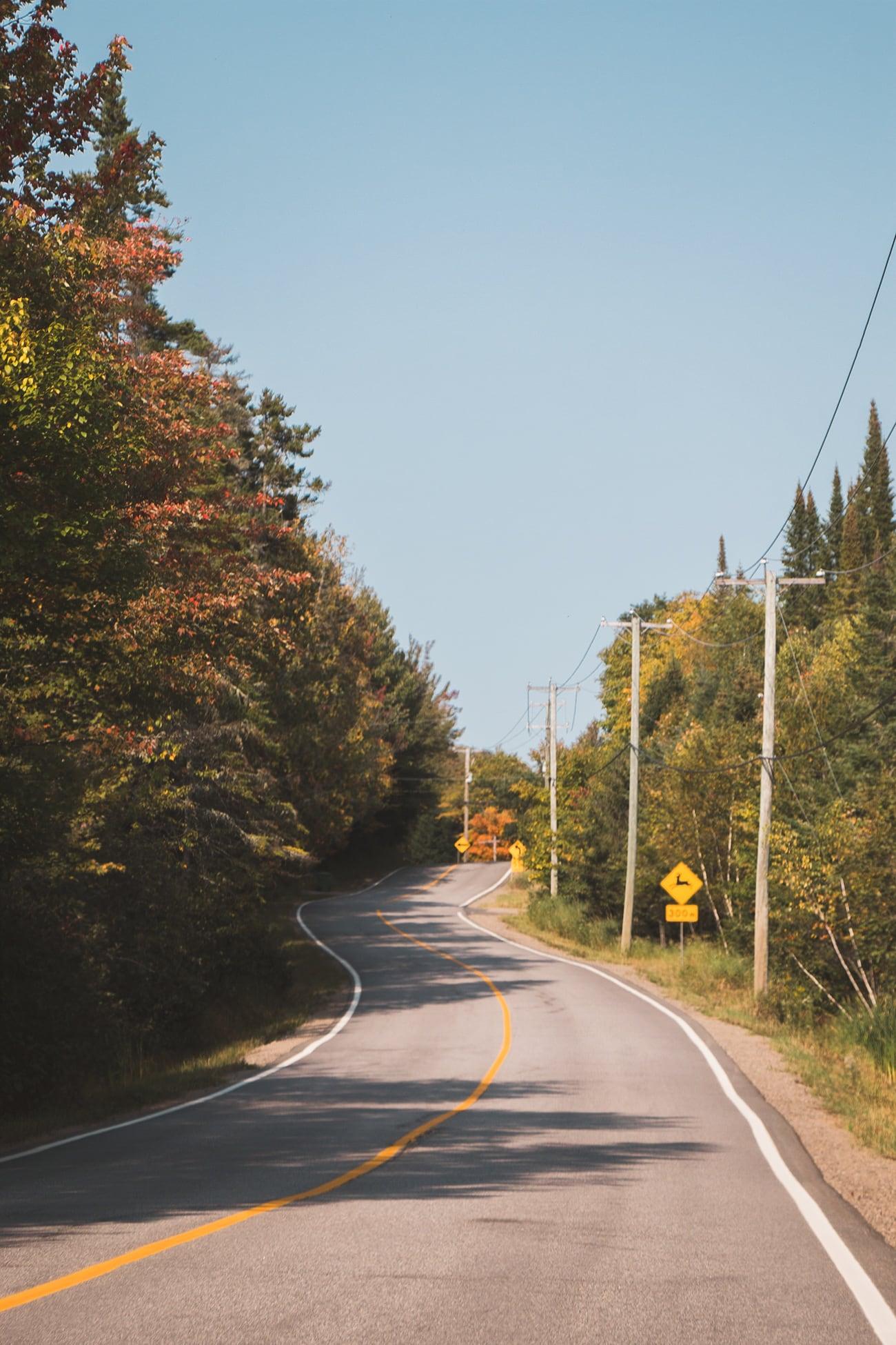 🍁 Carnet de bord Canadien #2 – Parc National du Mont-Tremblant & Lac Monroe