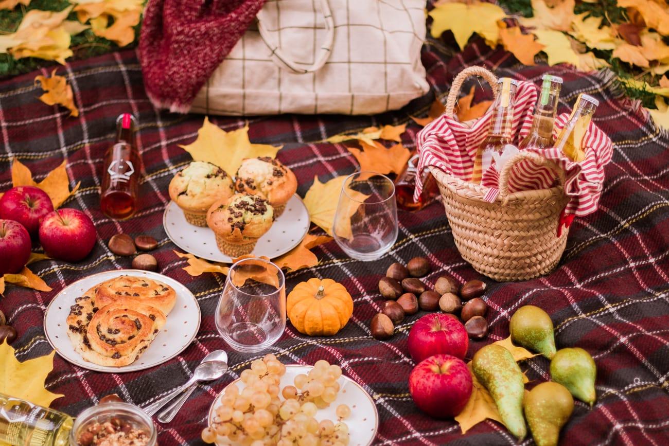L'histoire d'un automne Acibulée