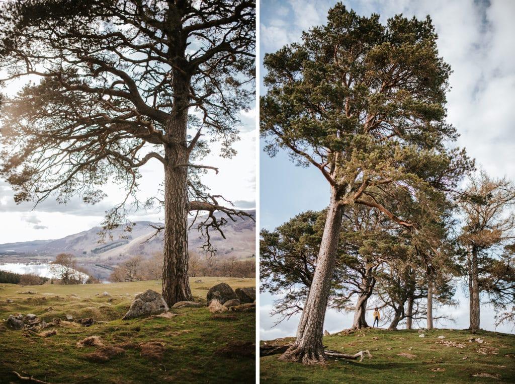 Écosse roadtrip travel scotland outlander craigh na dun - la mouette