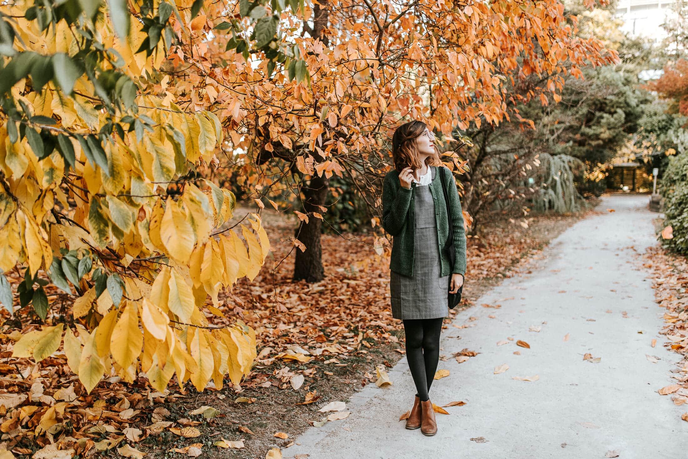 Parfum d'automne