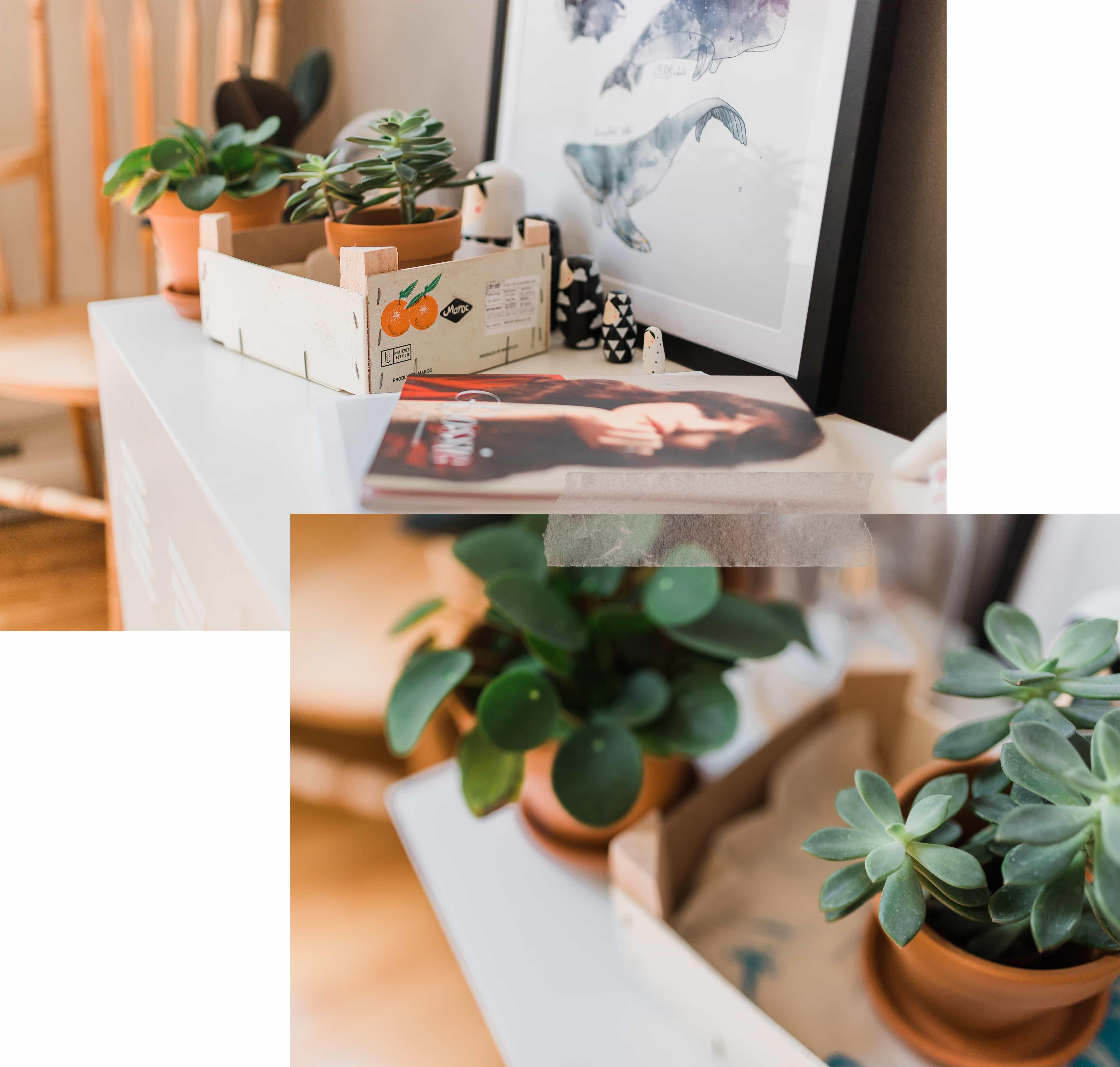 Deco Chambre Ami Bureau comment décorer et aménager une chambre d'amis dans un
