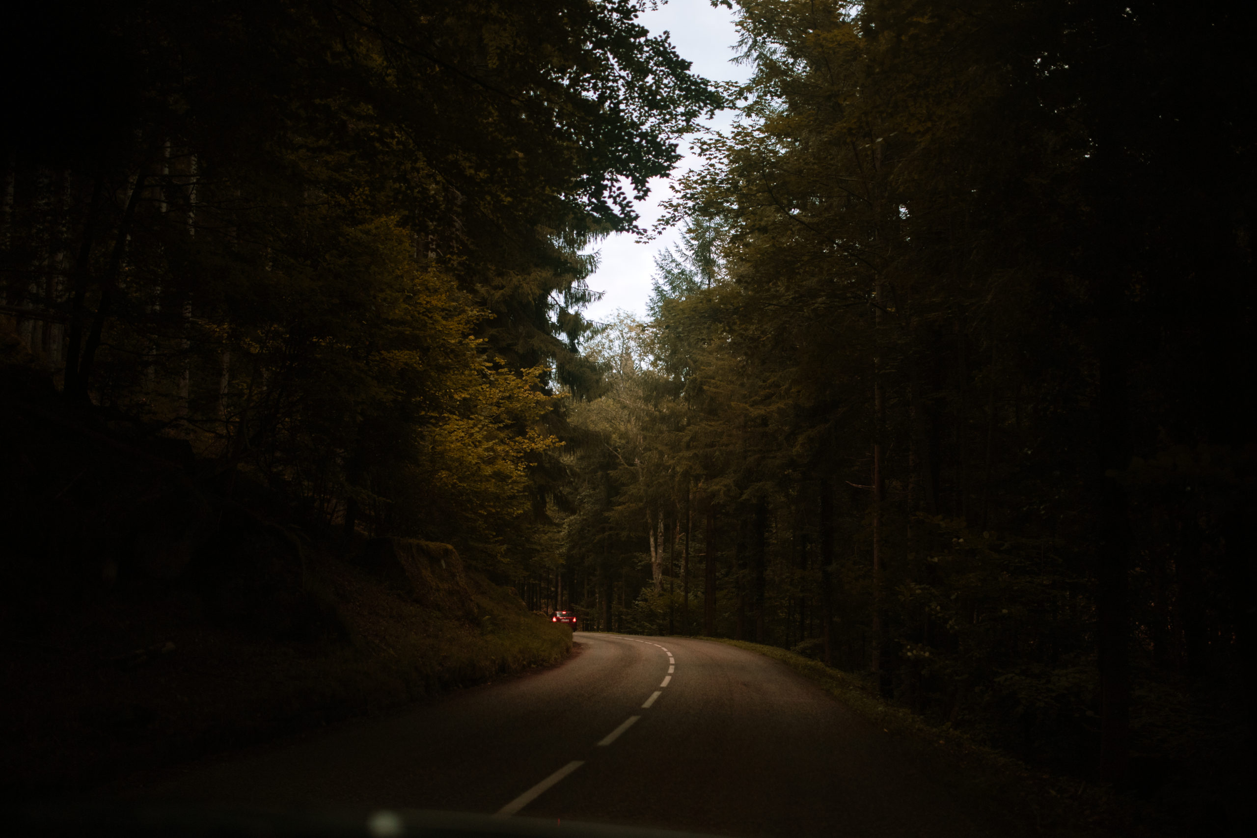 Brin d'humeur #1 — L'automne